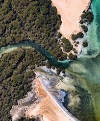 جزيرة أبو منقار